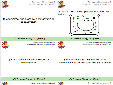 Combined Biology Revision Cards
