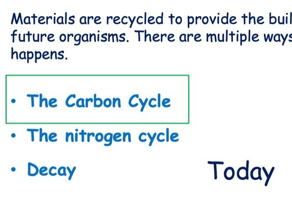 Full Carbon Cycle Lesson