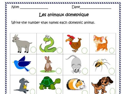 Les Animaux ( French Animals) Distance Learning Worksheets