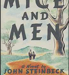 Of Mice and Men: Inferences