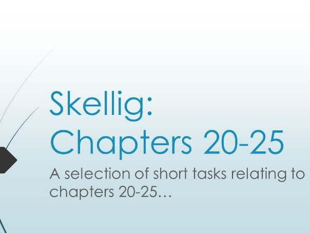 Skellig: Chapters 20-25 Activities