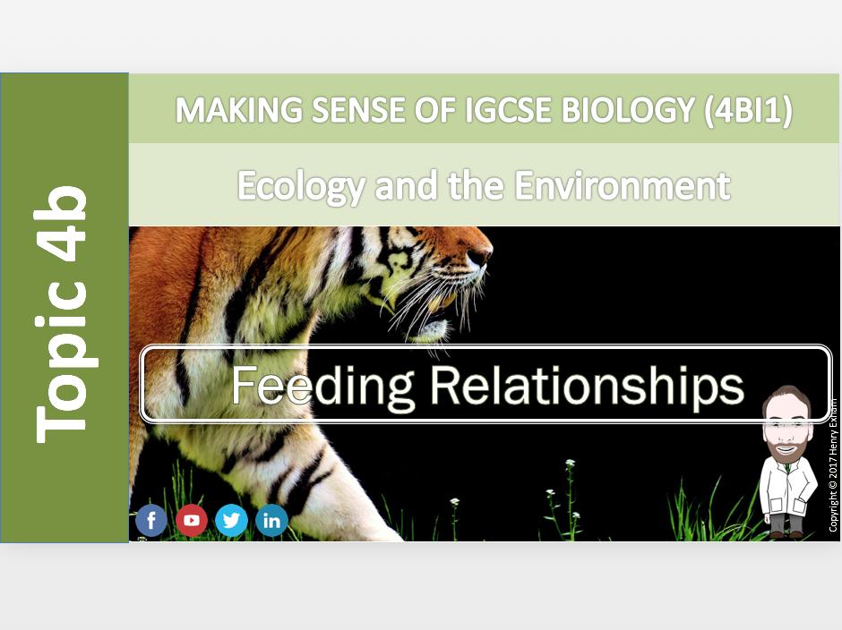 IGCSE Biology 9-1 - 4b Feeding Relationships