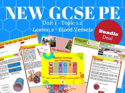 NEW Edexcel GCSE PE Unit 1 – Topic 1.2 – Cardiovascular System Lesson 2 – Blood Vessels (BUNDLE)