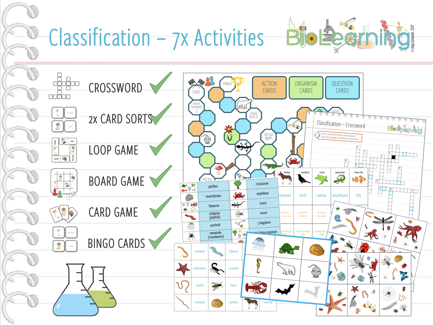 Classification - 7x Activities and Games