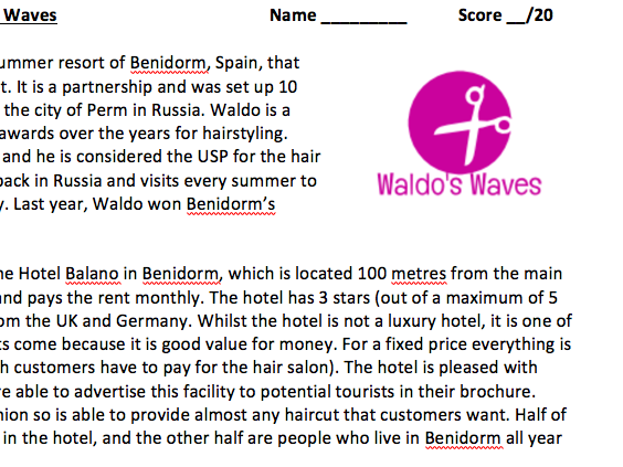 A-Level/ IB Business Case Study - Market Segmentation - Waldo's Waves