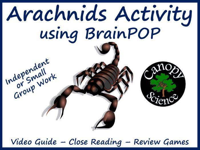 Arachnids Activity using BrainPOP