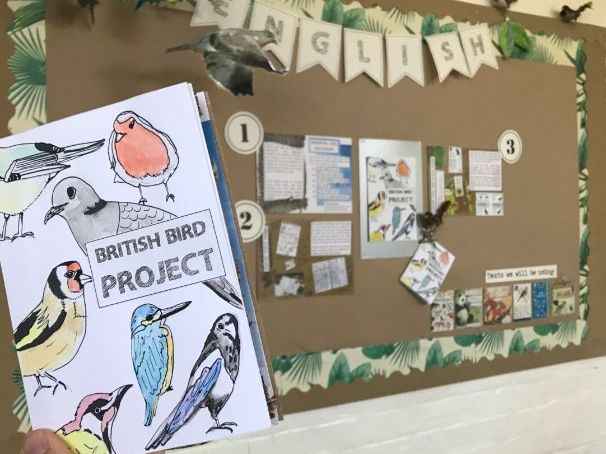 British Bird Project