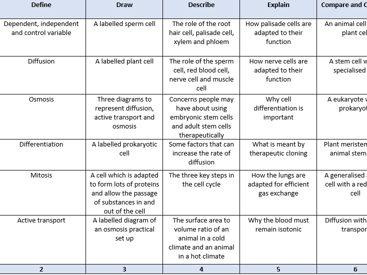 B1-B4 revision grids