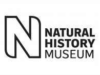 National History Museum Treasure Trail