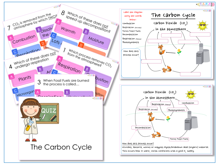 AfL Quiz and Worksheets The Carbon Cycle by – Carbon Cycle Worksheet High School