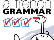 Extensive French grammar practice for GCSE students