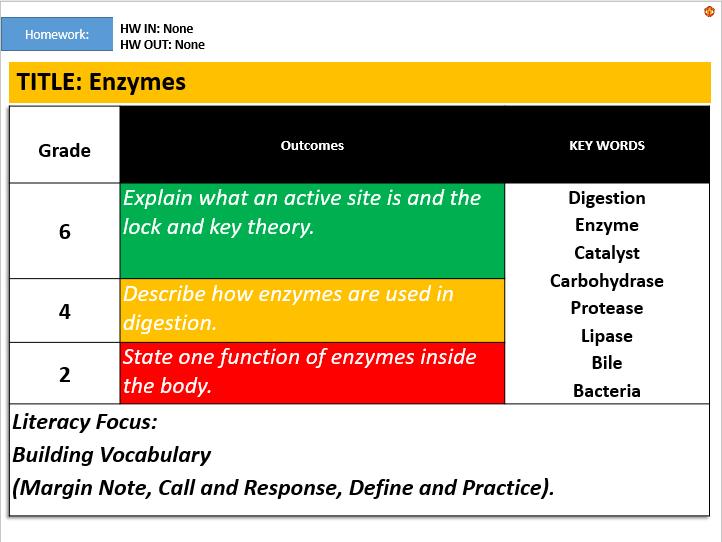 KS3: Enzymes