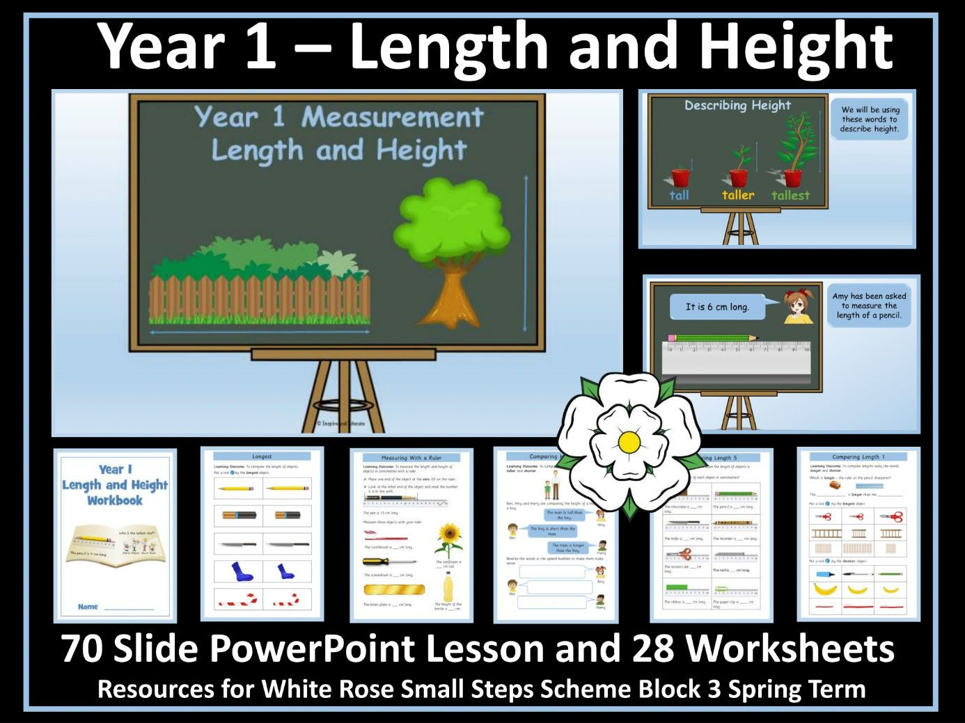 Length and Height Year 1