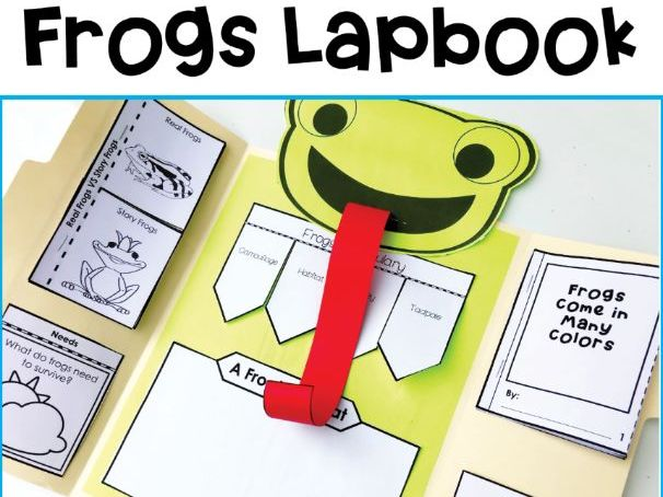 Frog Lifecycles Lapbook