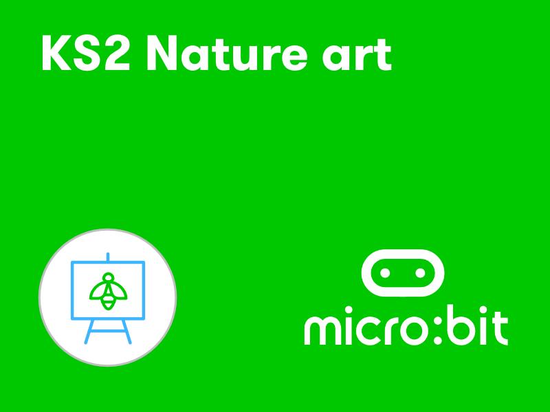 KS2 micro:bit nature art