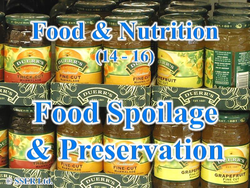 3.4 Food Spoilage & Preservation