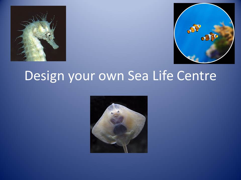 Design a Sea Life Centre Cross Curricular Maths Project Year 2, 3, 4, 5, 6 Power point