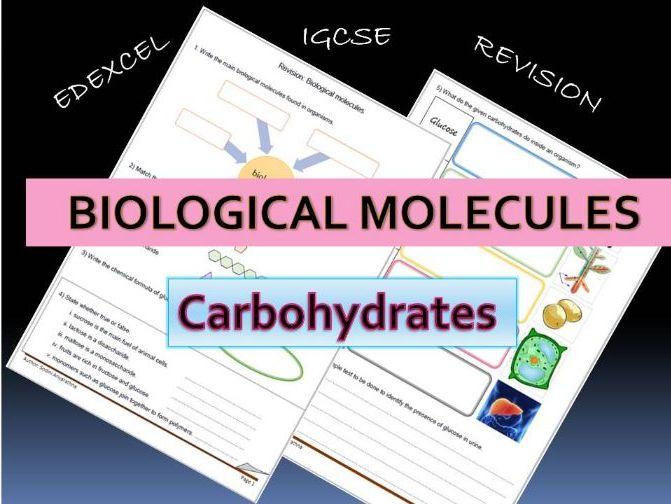 IGCSE Biological molecules revision