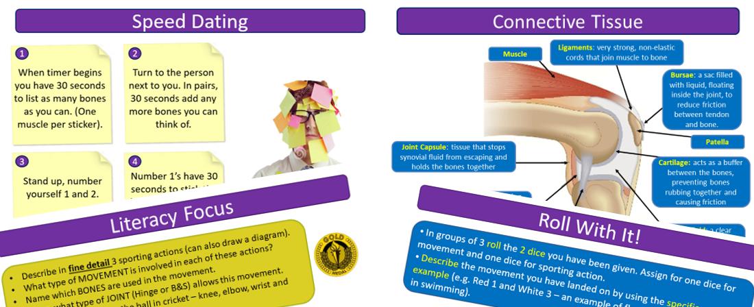 Skeletal System - AQA GCSE PE (9-1)