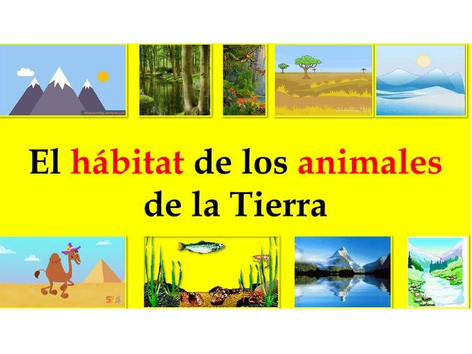 Distance Learning Special: Los animales salvajes (Hábitat)-Minilesson Video+Activities