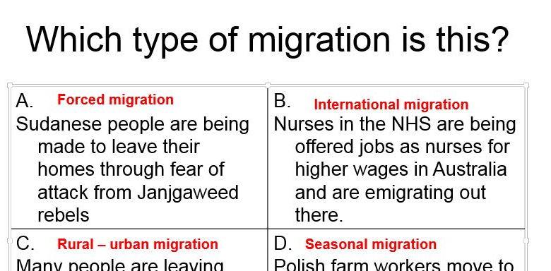 migration essay introduction