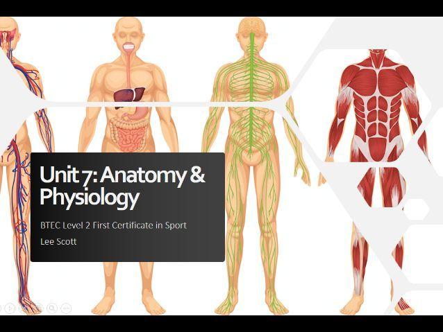 Unit 7 - Anatomy & physiology