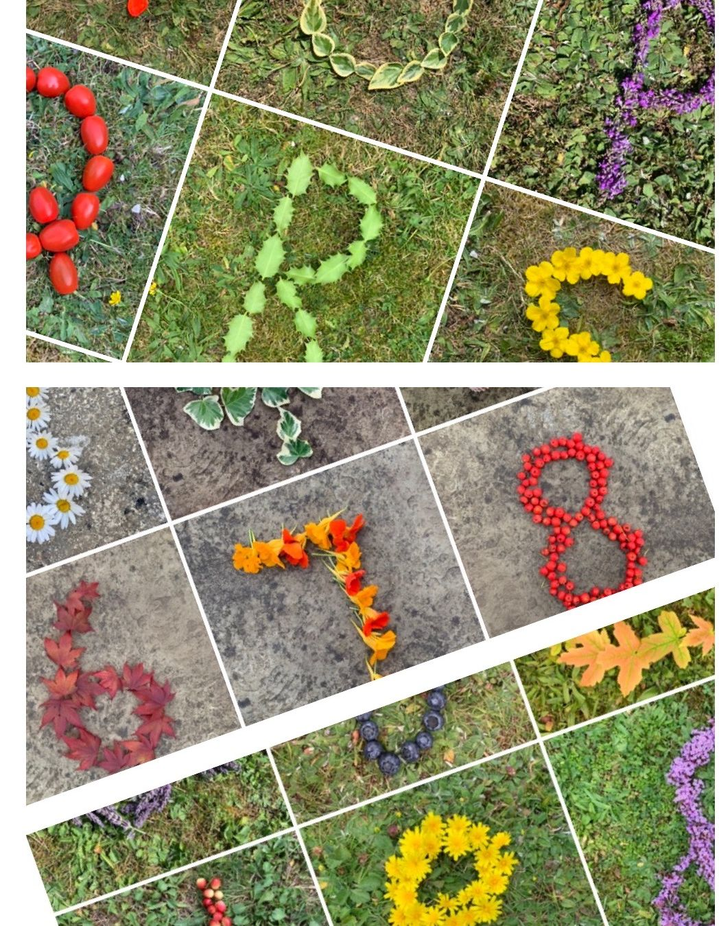 All natural objects displays- numbers 0-20, lower case and capital letters.