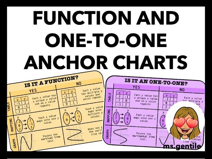 Function and One-to-One Relations Anchor Chart Poster