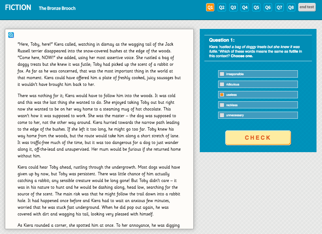 The Bronze Brooch - Interactive Exercise - Year 5 Reading Comprehension (Fiction)