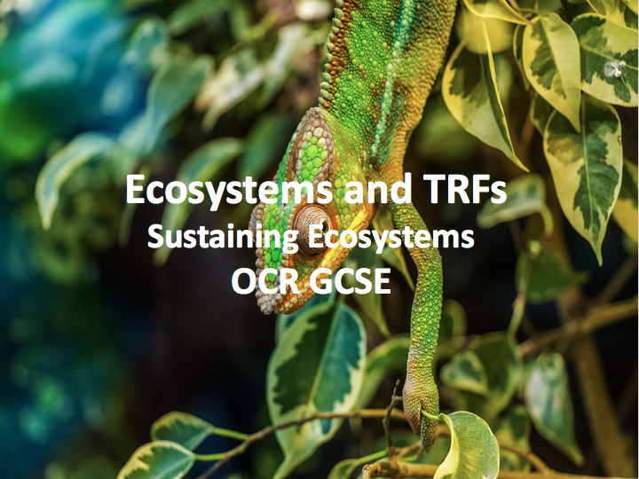 Sustaining Ecosystems - Ecosystems and Tropical Rainforests