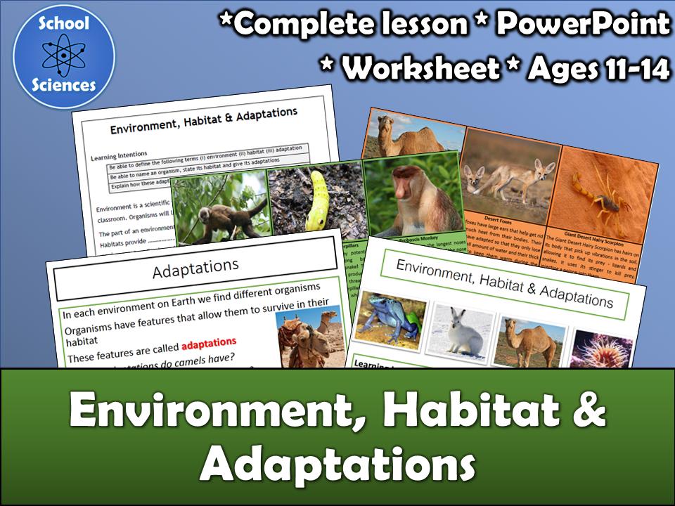 Environment, Habitat and Adaptations