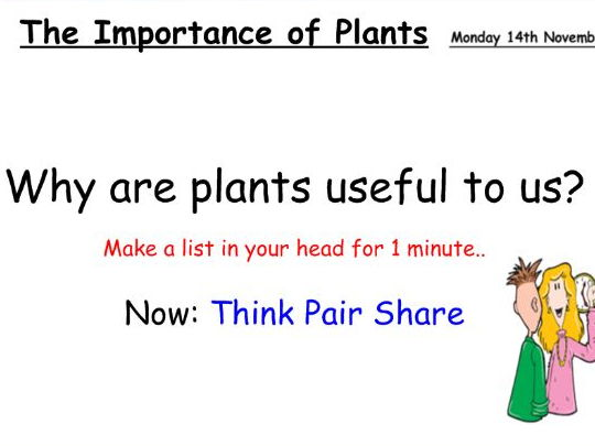 Collins - The importance of plants by sophielillywhite - Teaching Resources  - Tes