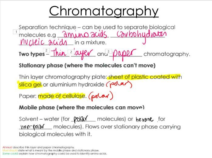 Chromatography, Paper, and thin layer, Plant pigment separation, OCR A ALevel Biology, Molecules.