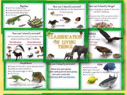 Animal Classification of Living Things PowerPoint and Student Interactive Notebook Bundled Lesson