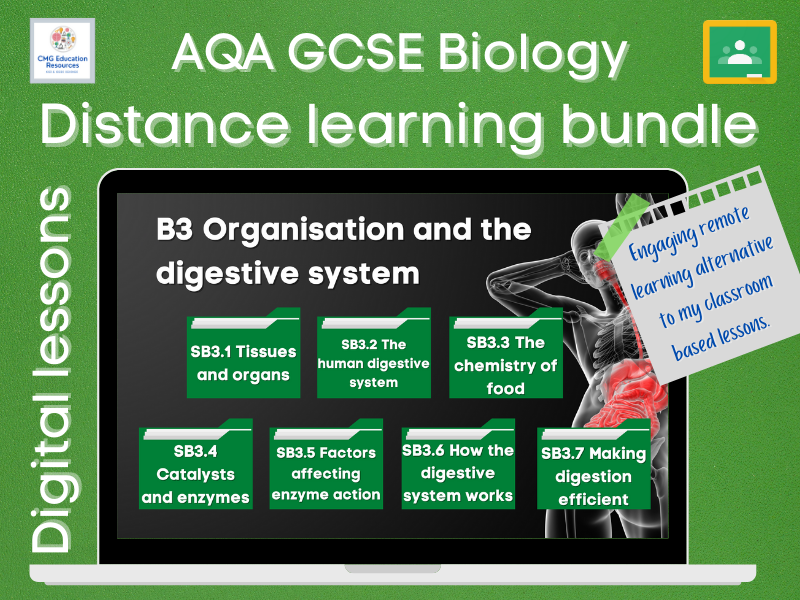 B3 Organisation and the digestive system: Distance learning bundle (AQA GCSE Biology)