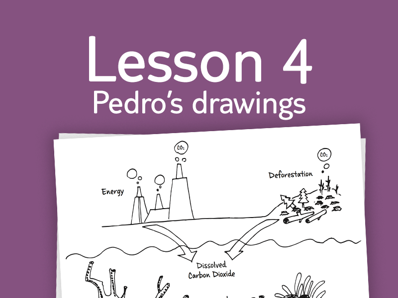 Lesson 4 - Activity 3: Pedro's drawings