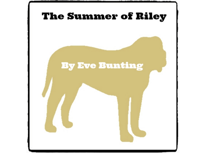 The Summer of Riley - (Reed Novel Studies)