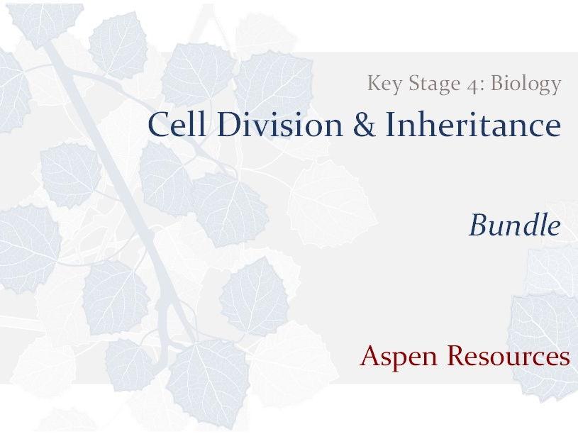 KS4 - Cell Division & Inheritance - Bundle