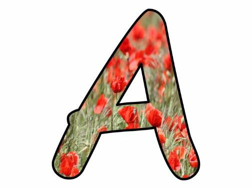 Printable display bulletin letters numbers and more: Poppies World War Remberance