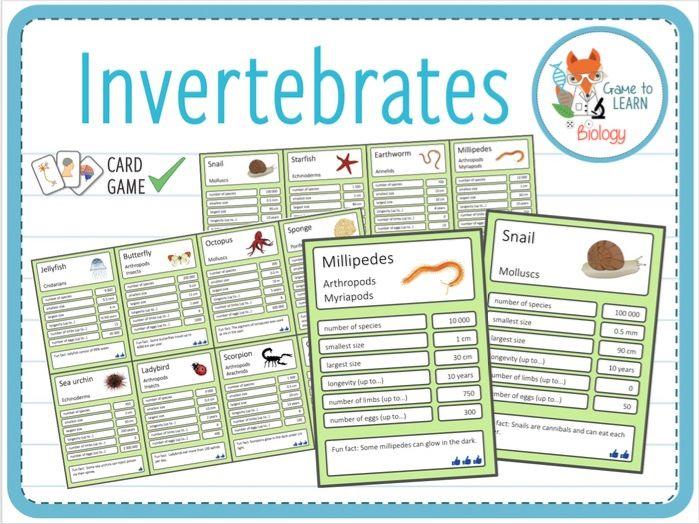 Invertebrates - Trumps Card Game (KS2/3)