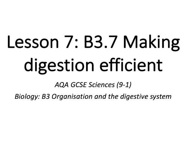 B3.7 Making digestion efficient