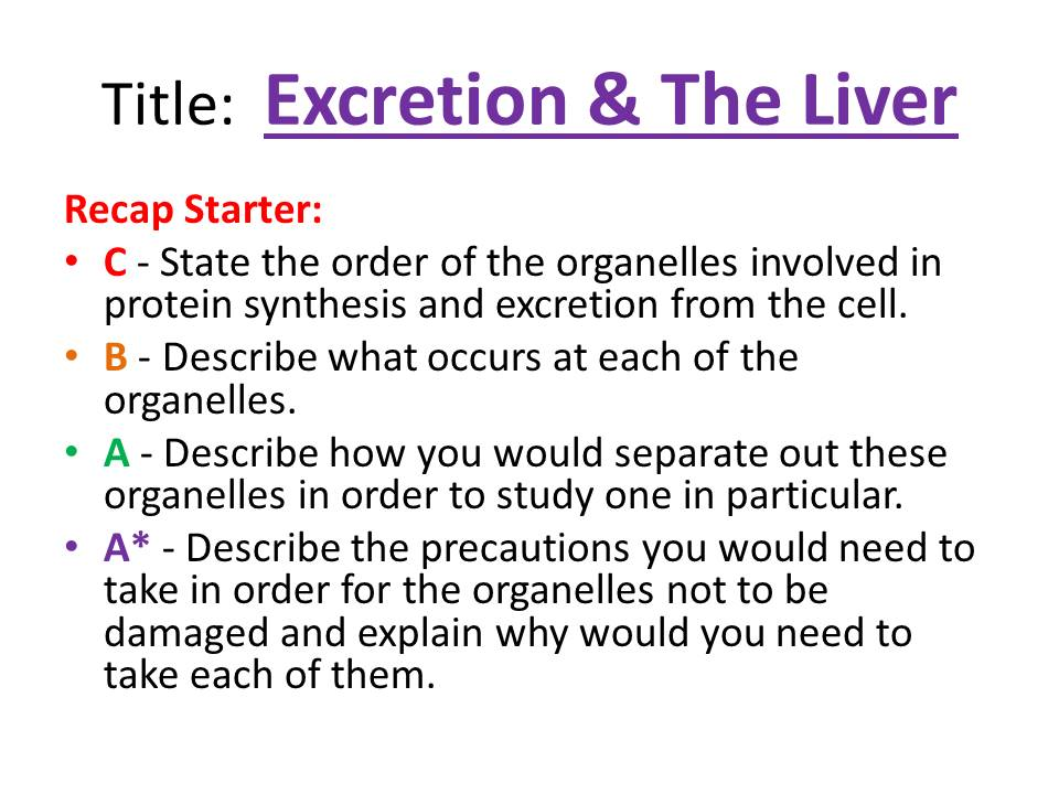 Excretion & The Liver - OCR AS/A Level Biology