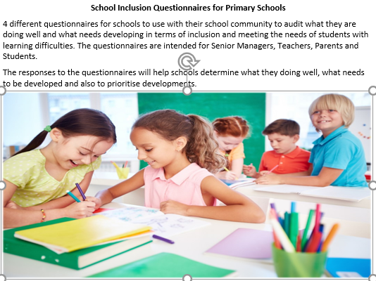 Questionnaires to Audit sch Inclusion