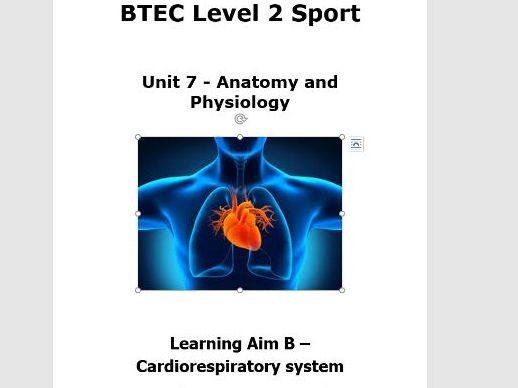 Workbooklet Aim B (Cardiorespiratory system)