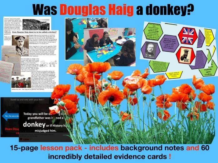 Was Haig the butcher of the Somme? - 15-page full lesson (notes, card sort)