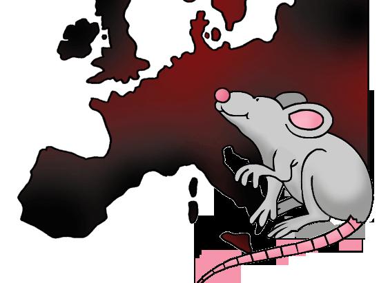 The Plague Year 5+ Unit 6 Week Plan