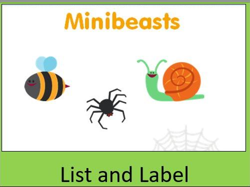 Minibeast List and Labelling Worksheets