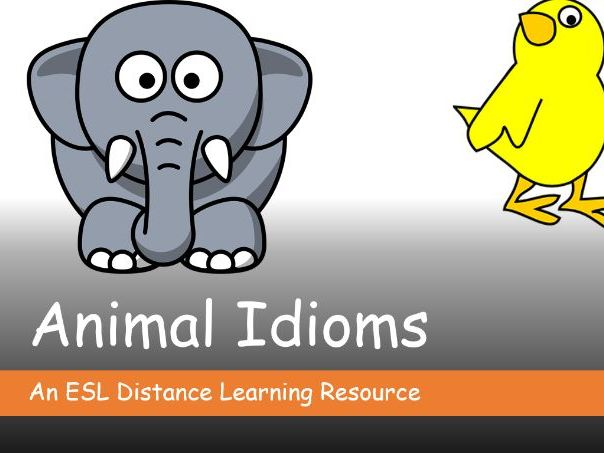 Animal Idioms. Distance Learning