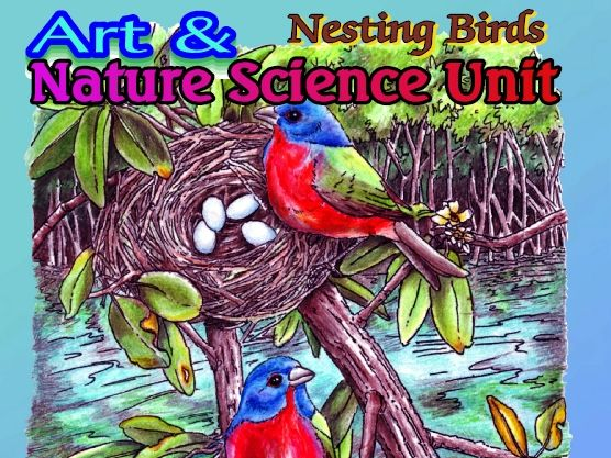 """Nesting Birds"" - Art & Nature Science Unit #2"
