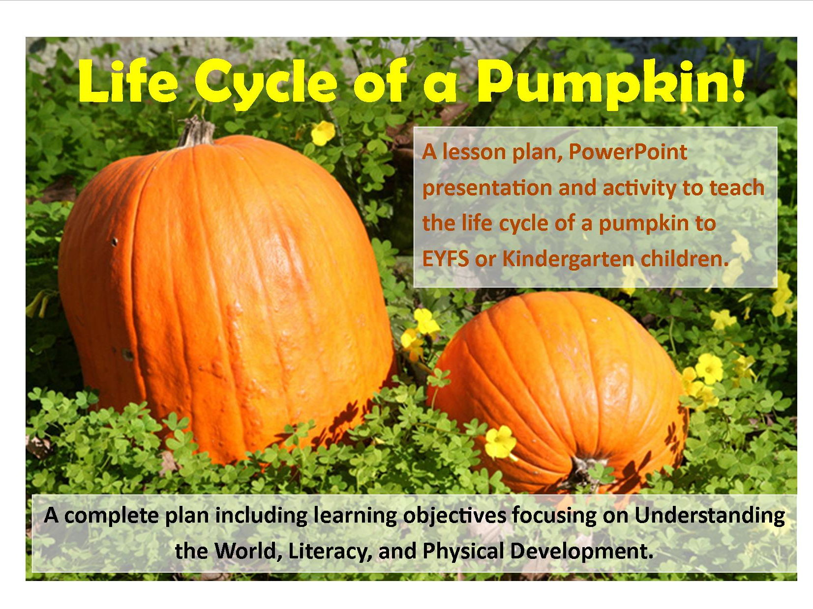 Halloween Pumpkin Bundle Lesson Plans and Resources Pack